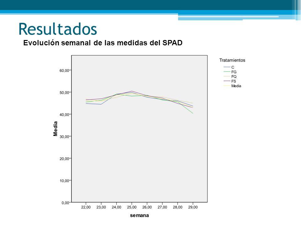 Resultados Evolución semanal de las medidas del SPAD