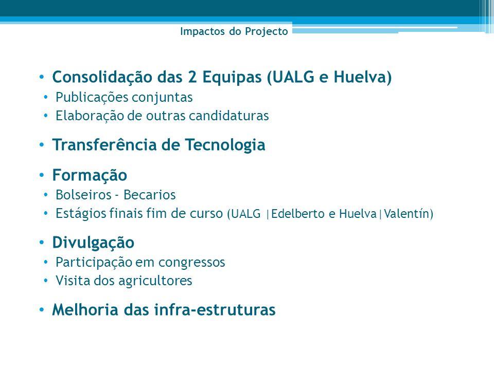 Consolidação das 2 Equipas (UALG e Huelva)