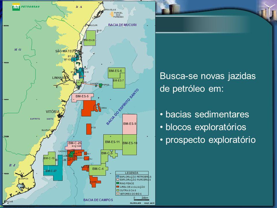 Busca-se novas jazidas de petróleo em: bacias sedimentares