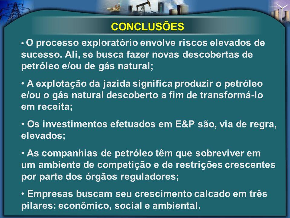 CONCLUSÕES O processo exploratório envolve riscos elevados de sucesso. Ali, se busca fazer novas descobertas de petróleo e/ou de gás natural;