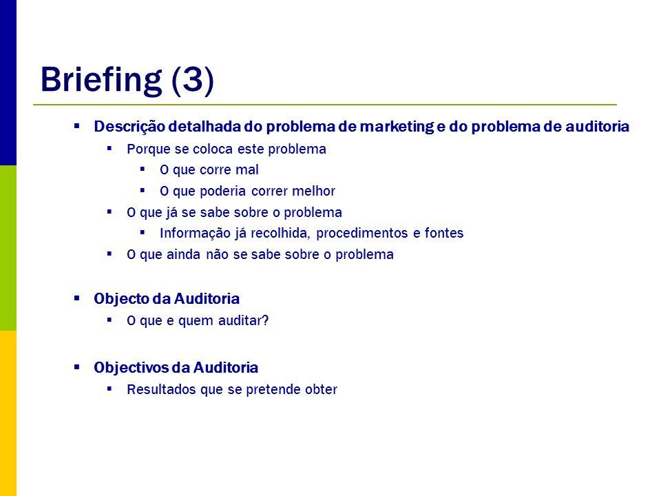 Briefing (3) Descrição detalhada do problema de marketing e do problema de auditoria. Porque se coloca este problema.