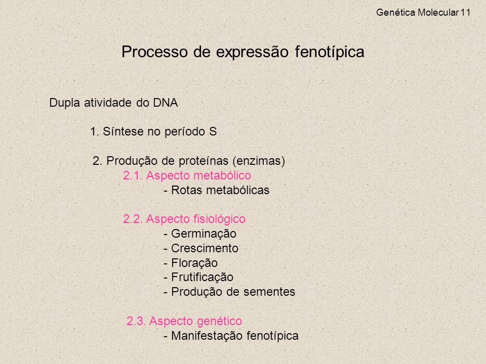 Processo de expressão fenotípica