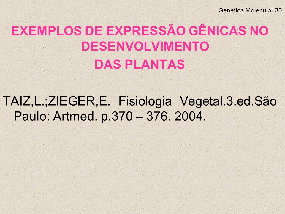 EXEMPLOS DE EXPRESSÃO GÊNICAS NO DESENVOLVIMENTO