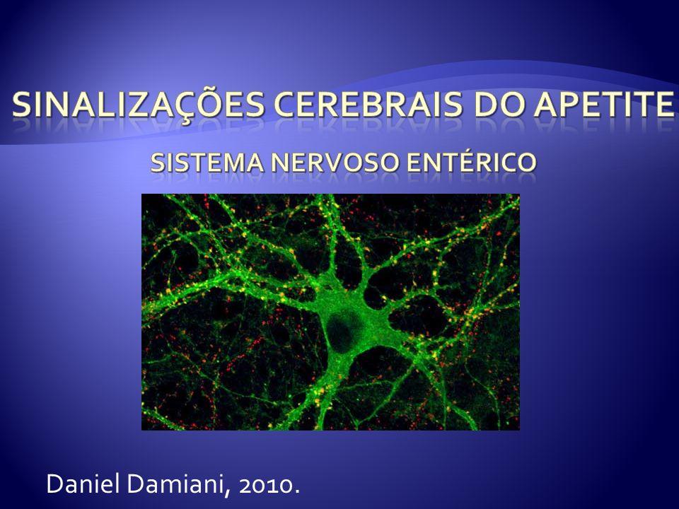 Sinalizações Cerebrais do Apetite Sistema nervoso Entérico