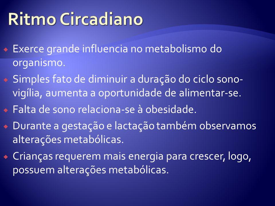 Ritmo Circadiano Exerce grande influencia no metabolismo do organismo.