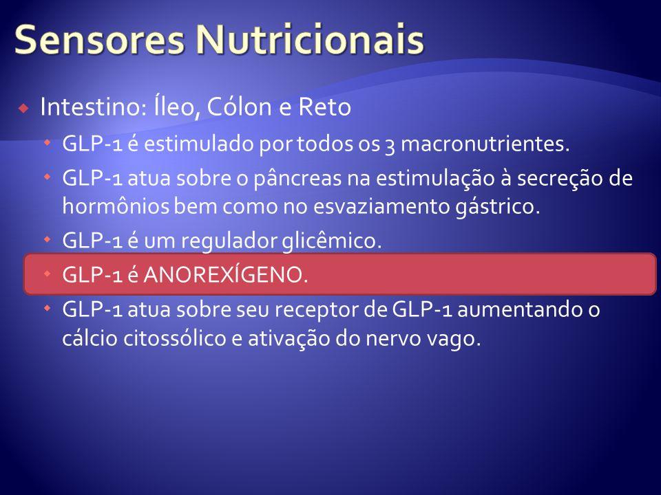 Sensores Nutricionais
