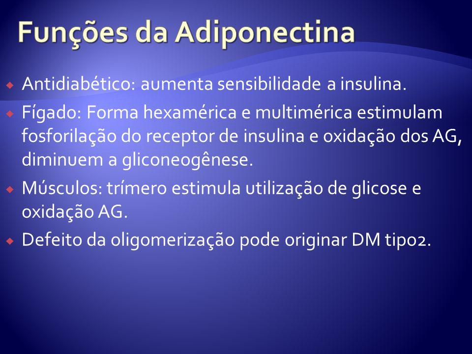 Funções da Adiponectina