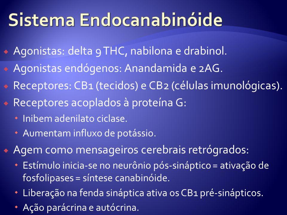Sistema Endocanabinóide