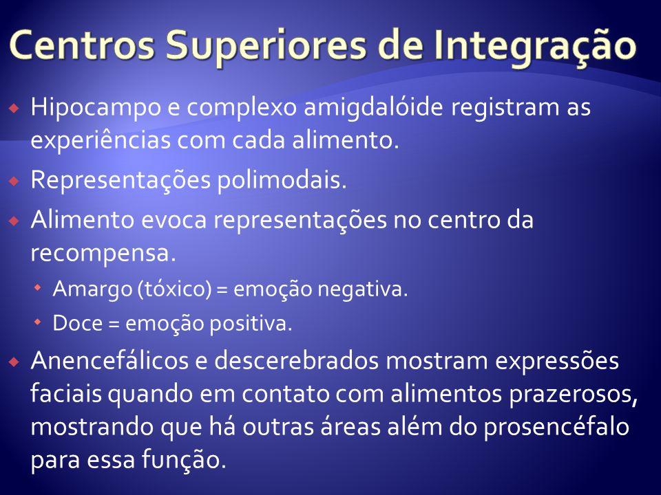 Centros Superiores de Integração
