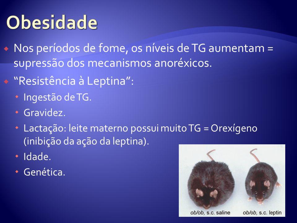 Obesidade Nos períodos de fome, os níveis de TG aumentam = supressão dos mecanismos anoréxicos. Resistência à Leptina :