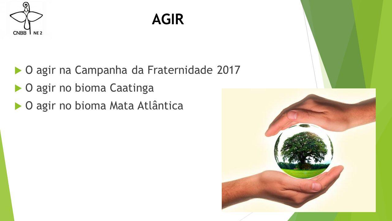 AGIR O agir na Campanha da Fraternidade 2017 O agir no bioma Caatinga