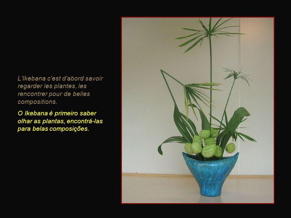 L Ikebana c est d abord savoir regarder les plantes, les rencontrer pour de belles compositions.