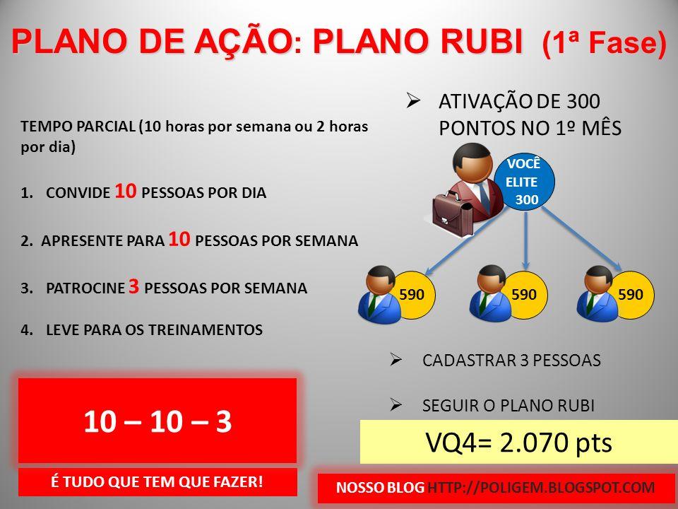 PLANO DE AÇÃO: PLANO RUBI (1ª Fase) 10 – 10 – 3