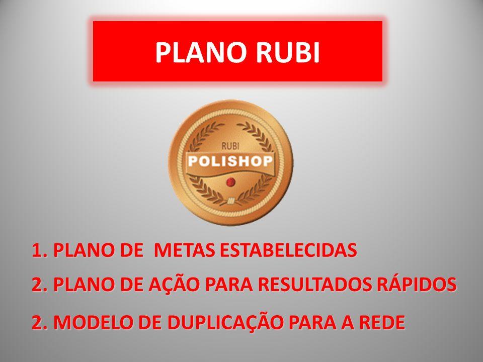 PLANO RUBI 1. PLANO DE METAS ESTABELECIDAS