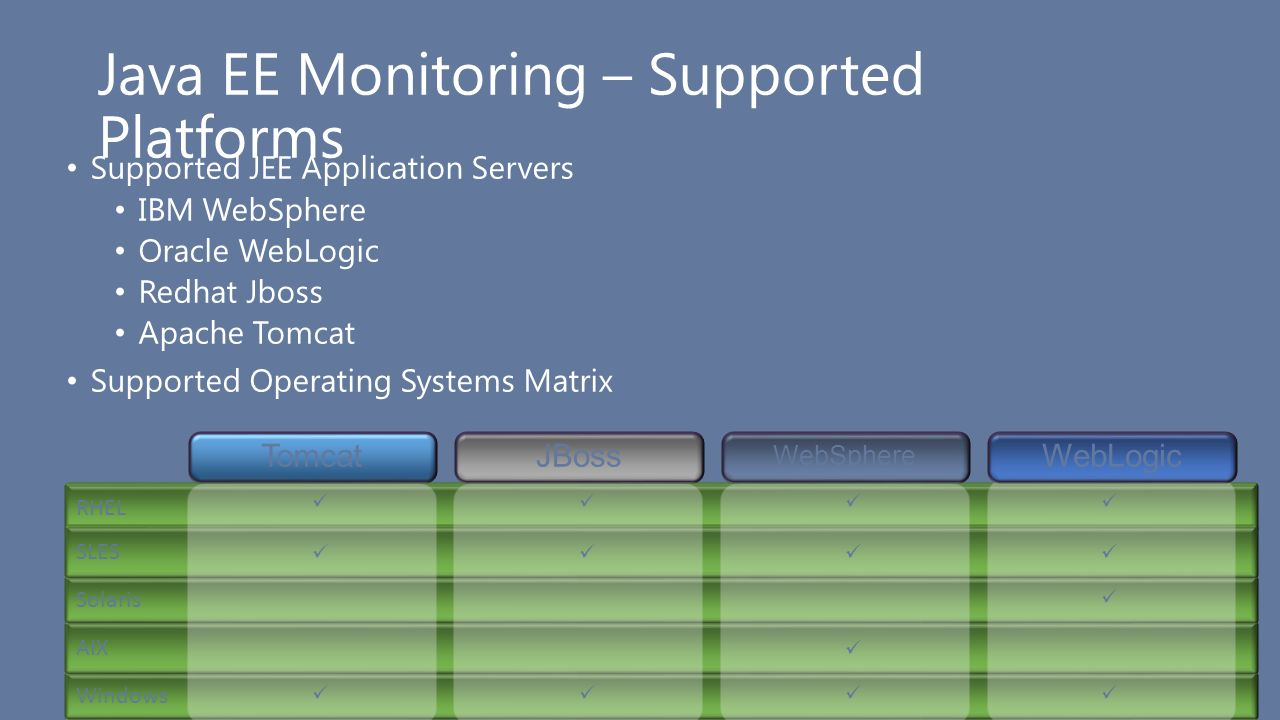 Java EE Monitoring – Supported Platforms
