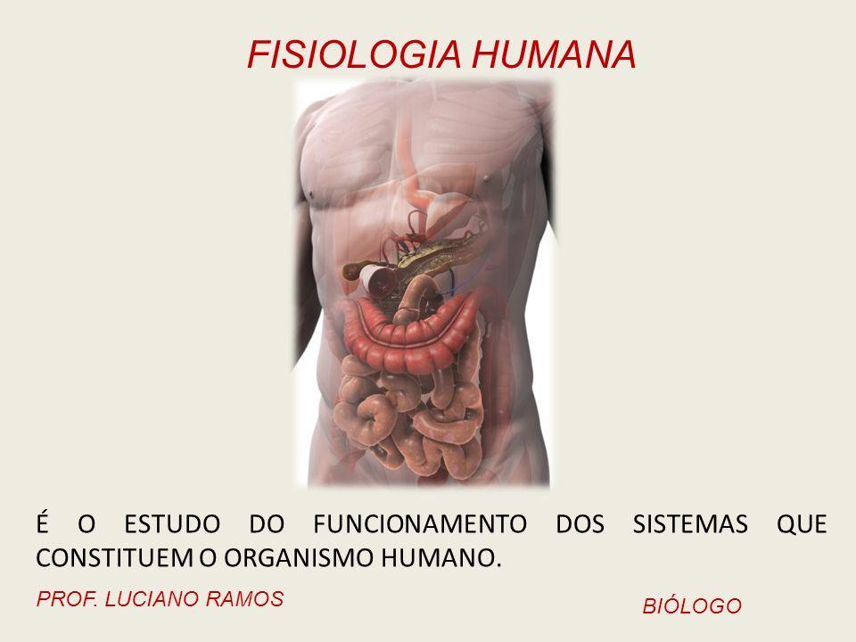 É O ESTUDO DO FUNCIONAMENTO DOS SISTEMAS QUE CONSTITUEM O ORGANISMO HUMANO.