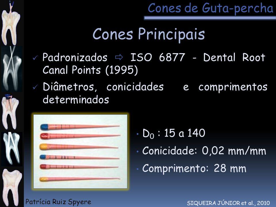 Cones Principais Cones de Guta-percha