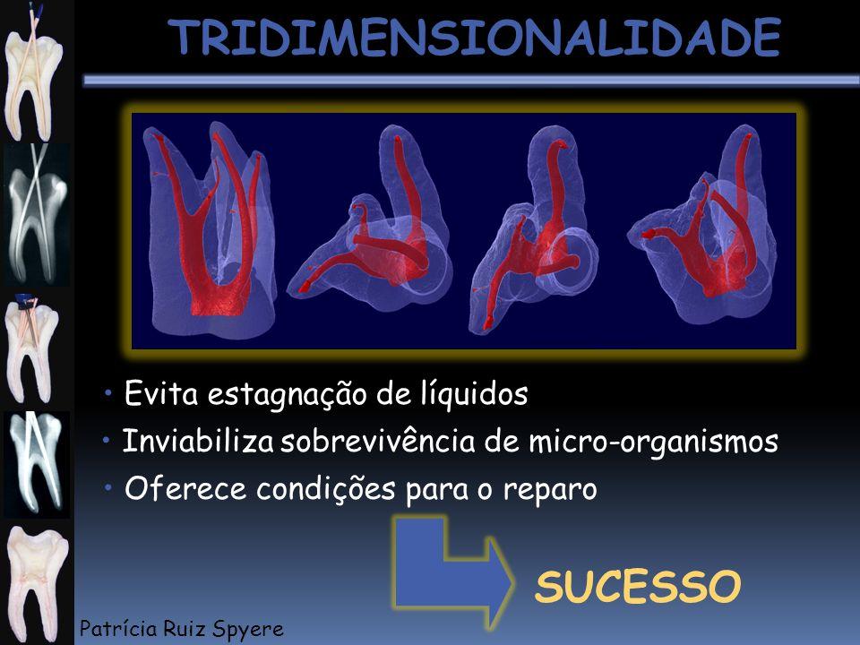 TRIDIMENSIONALIDADE SUCESSO • Evita estagnação de líquidos