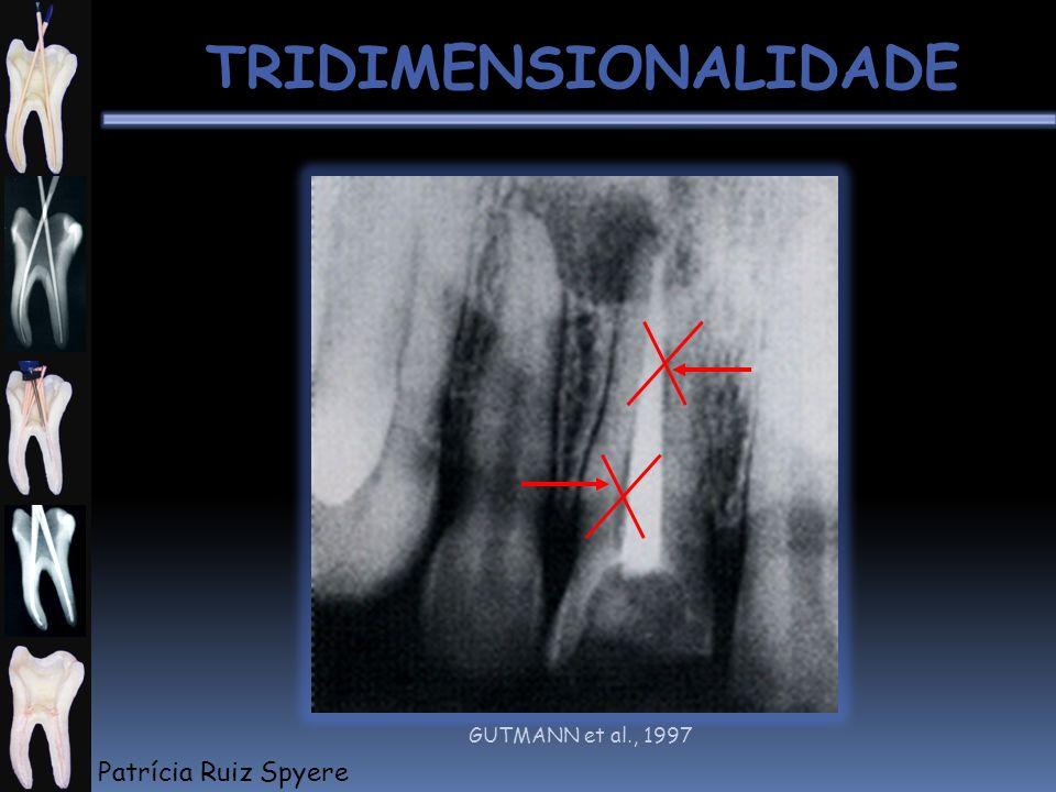 TRIDIMENSIONALIDADE GUTMANN et al., 1997 Patrícia Ruiz Spyere
