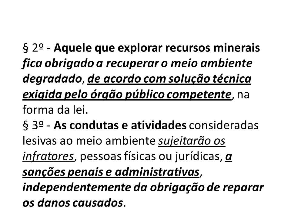 § 2º - Aquele que explorar recursos minerais fica obrigado a recuperar o meio ambiente degradado, de acordo com solução técnica exigida pelo órgão público competente, na forma da lei.