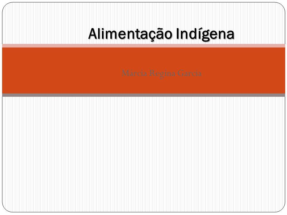 Alimentação Indígena Márcia Regina Garcia