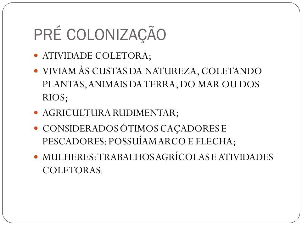 PRÉ COLONIZAÇÃO ATIVIDADE COLETORA;
