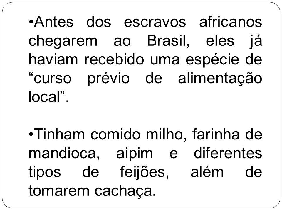 Antes dos escravos africanos chegarem ao Brasil, eles já haviam recebido uma espécie de curso prévio de alimentação local .