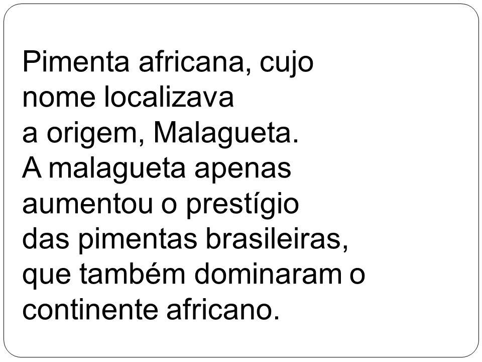 Pimenta africana, cujo nome localizava