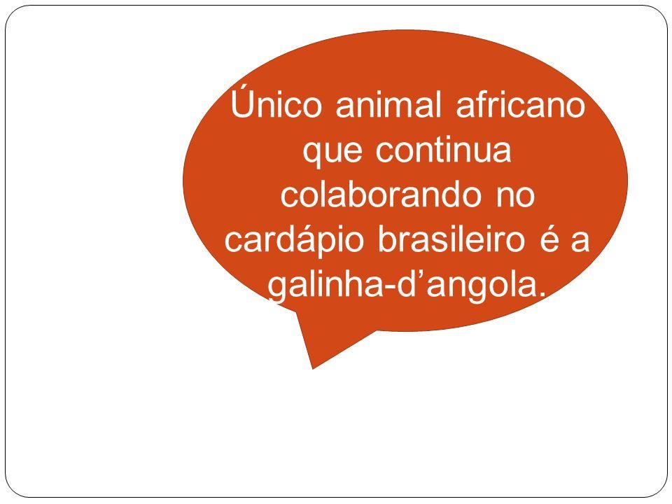Único animal africano que continua