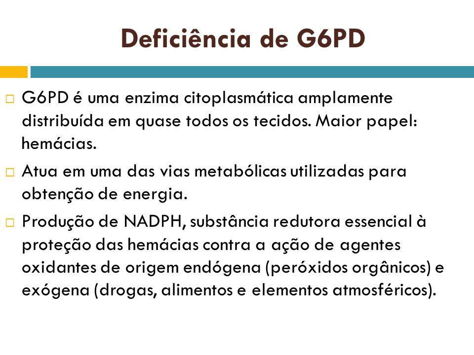 Deficiência de G6PD G6PD é uma enzima citoplasmática amplamente distribuída em quase todos os tecidos. Maior papel: hemácias.