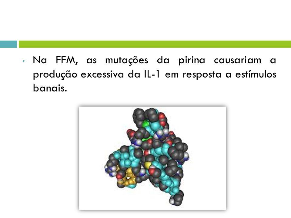 Na FFM, as mutações da pirina causariam a produção excessiva da IL-1 em resposta a estímulos banais.