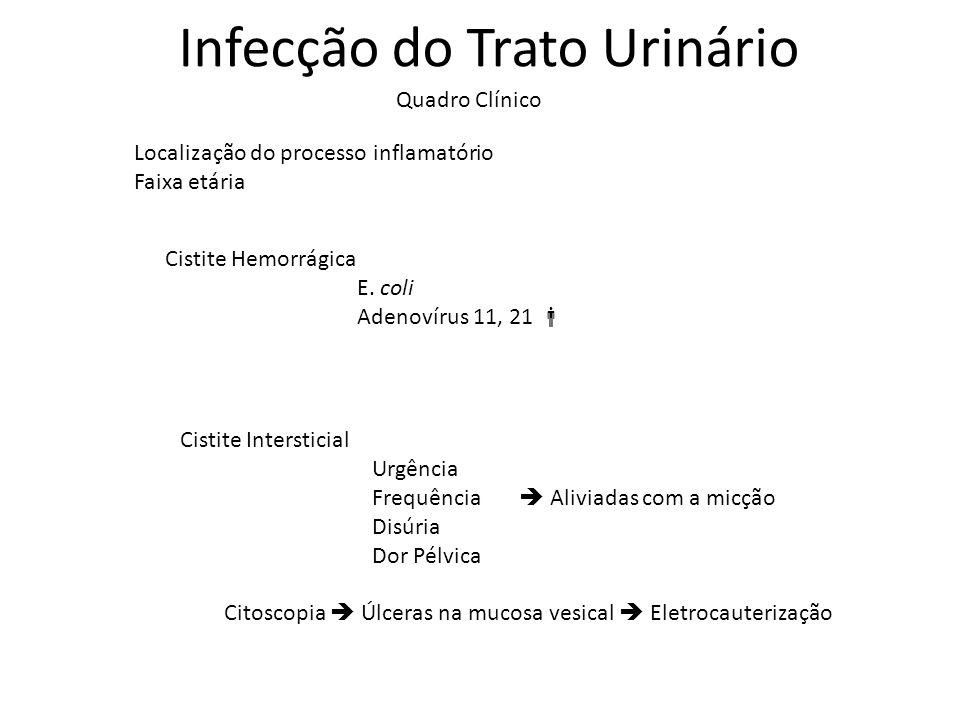 Infecção do Trato Urinário