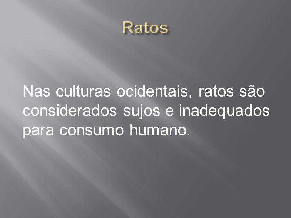 Ratos Nas culturas ocidentais, ratos são considerados sujos e inadequados para consumo humano.