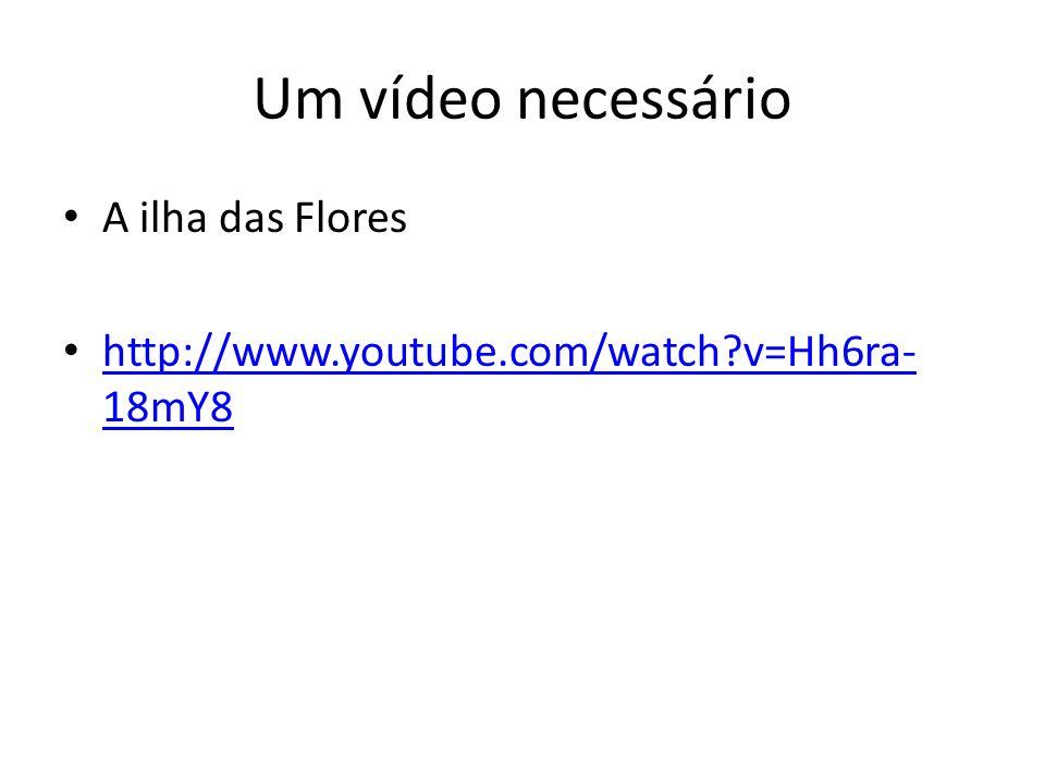 Um vídeo necessário A ilha das Flores