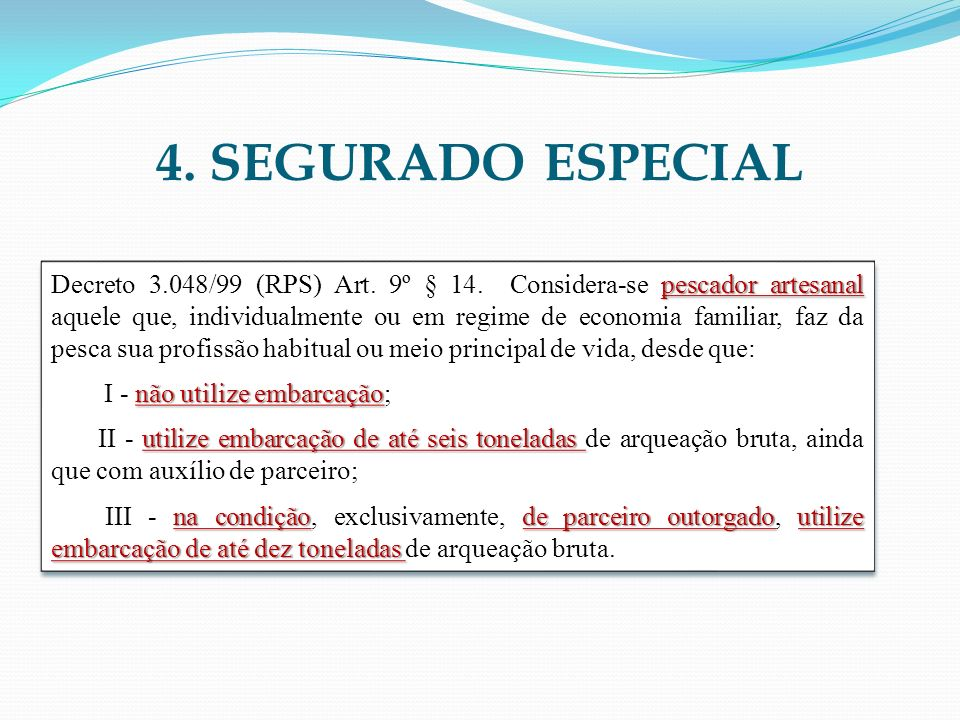4. SEGURADO ESPECIAL