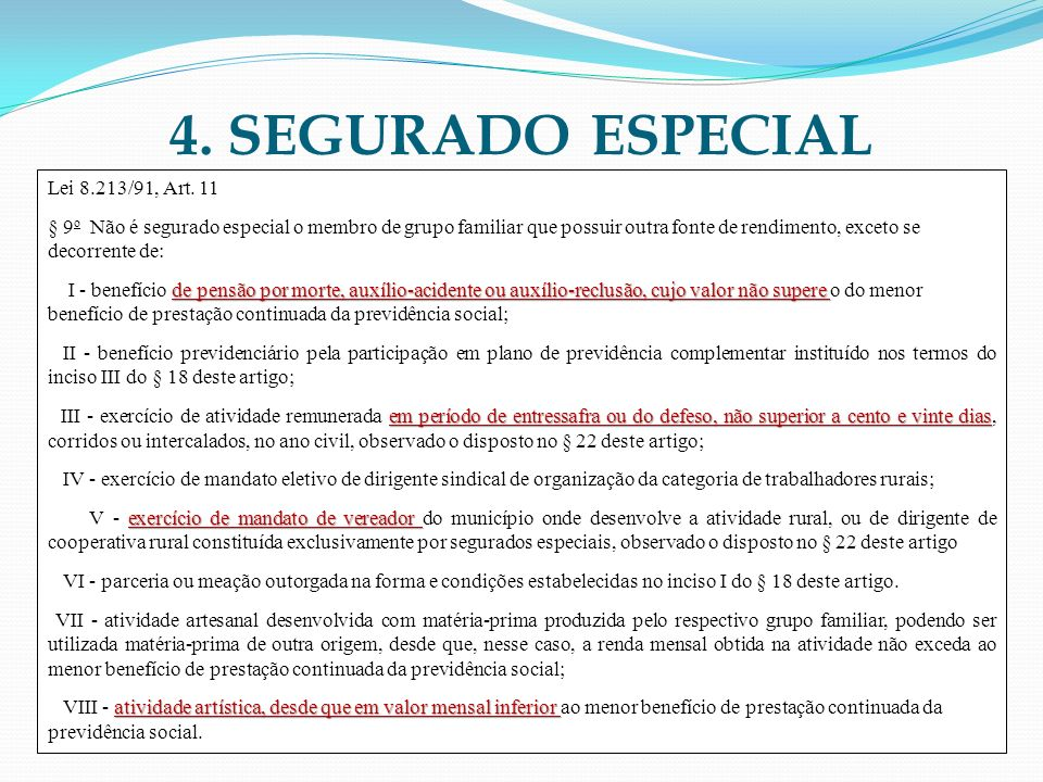 4. SEGURADO ESPECIAL Lei 8.213/91, Art. 11