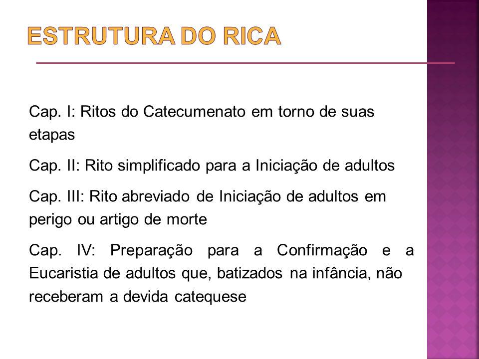 ESTRUTURA DO RICA
