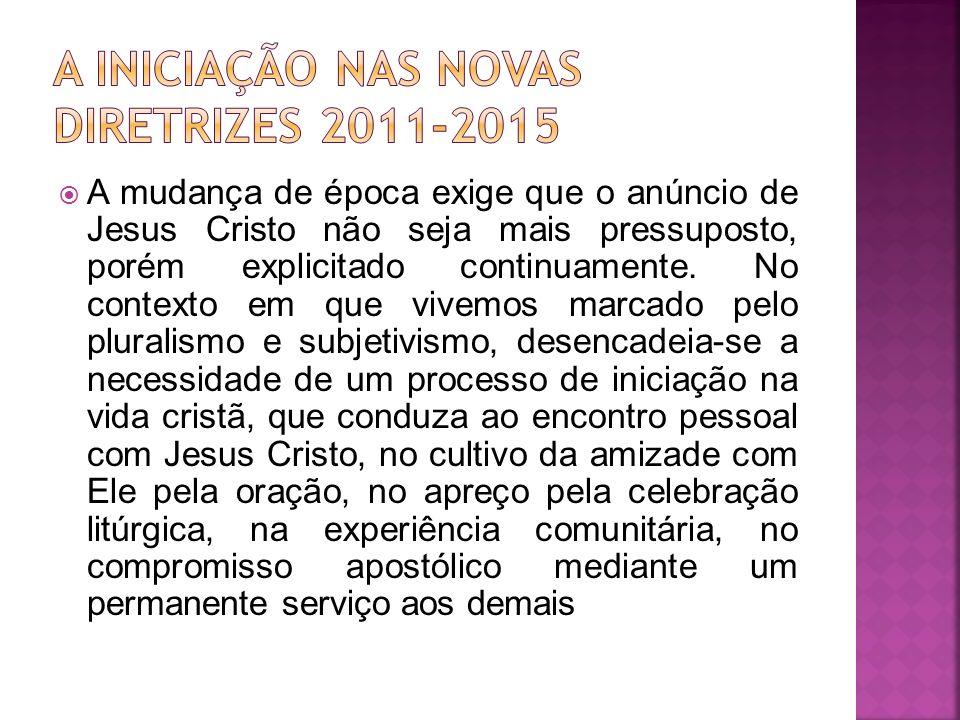 A INICIAÇÃO NAS NOVAS DIRETRIZES 2011-2015