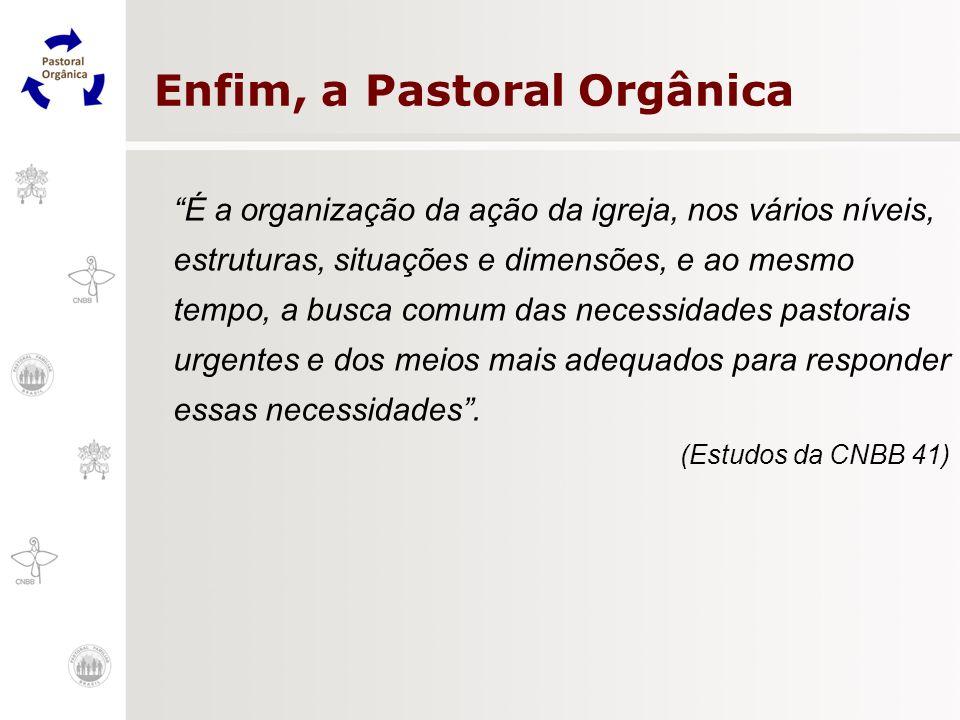 Enfim, a Pastoral Orgânica
