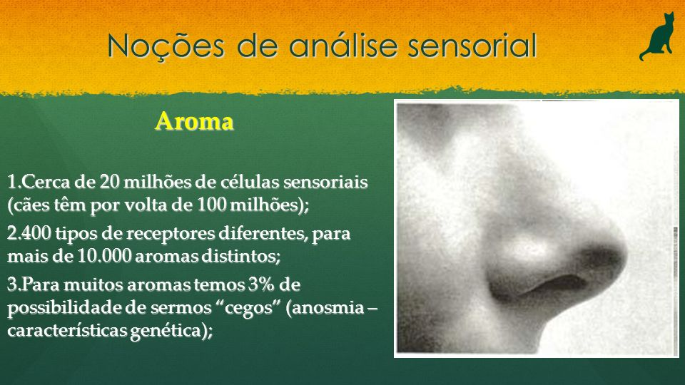 Noções de análise sensorial