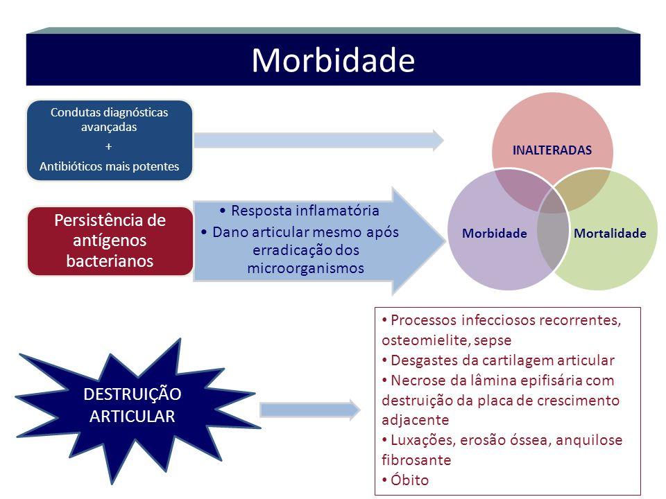 Morbidade Persistência de antígenos bacterianos DESTRUIÇÃO ARTICULAR