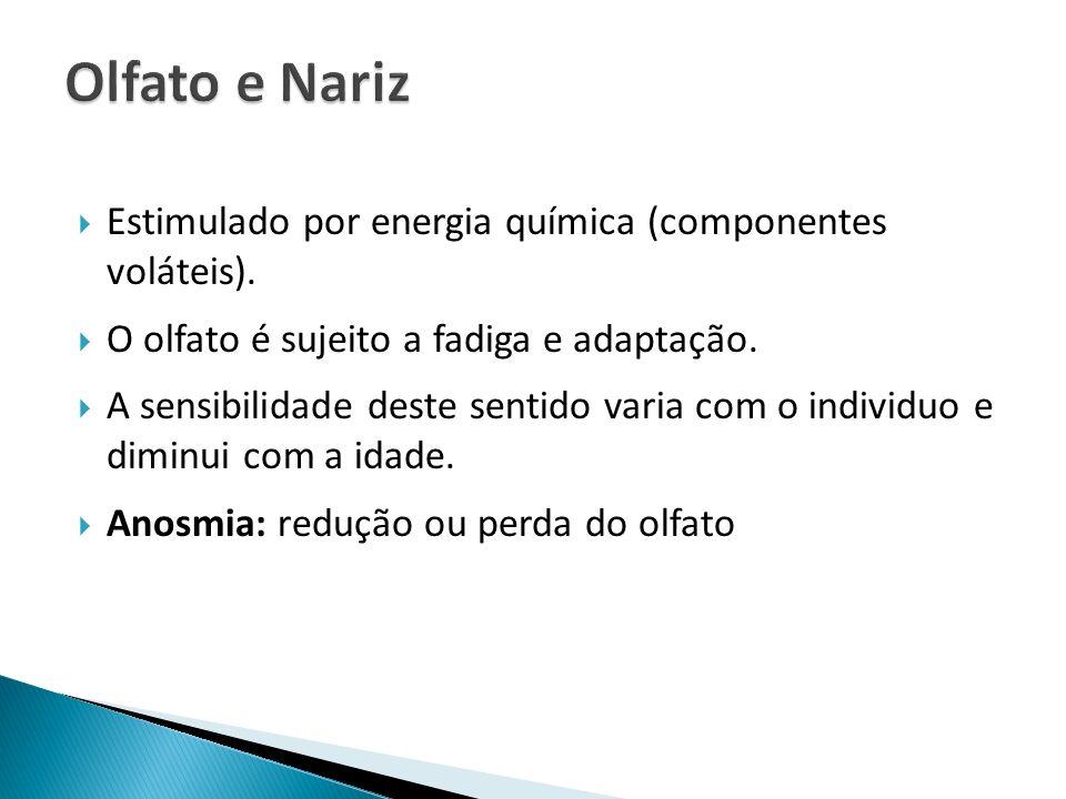 Olfato e Nariz Estimulado por energia química (componentes voláteis).