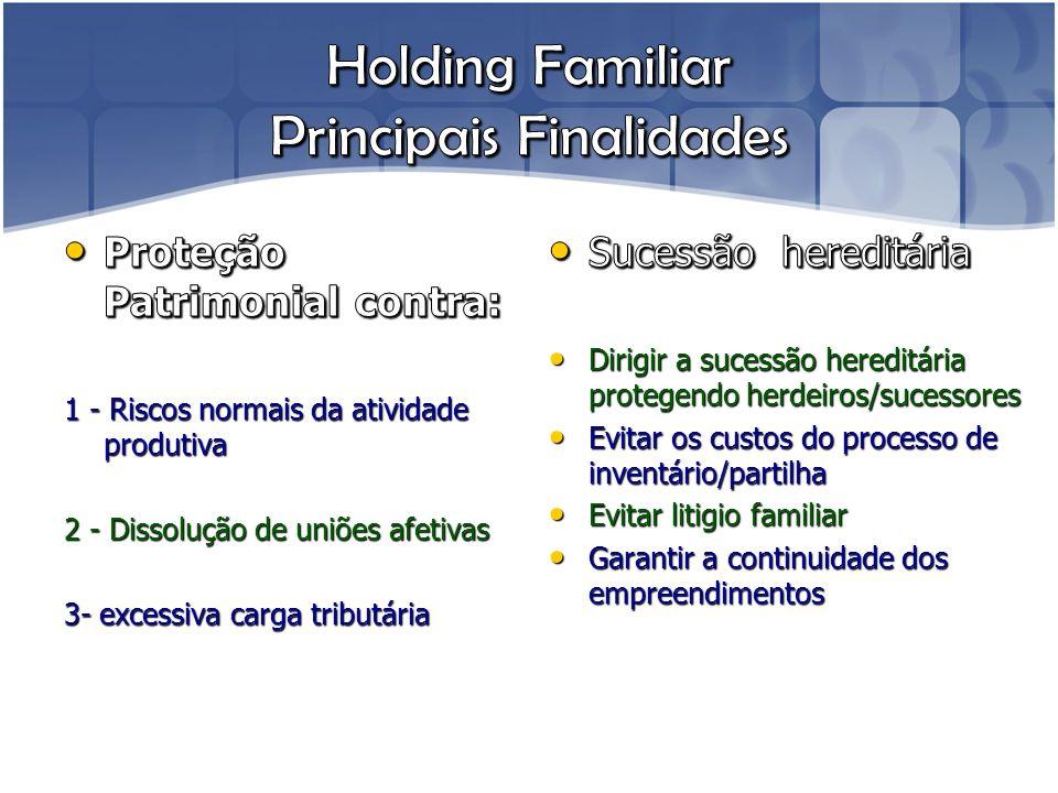 Holding Familiar Principais Finalidades