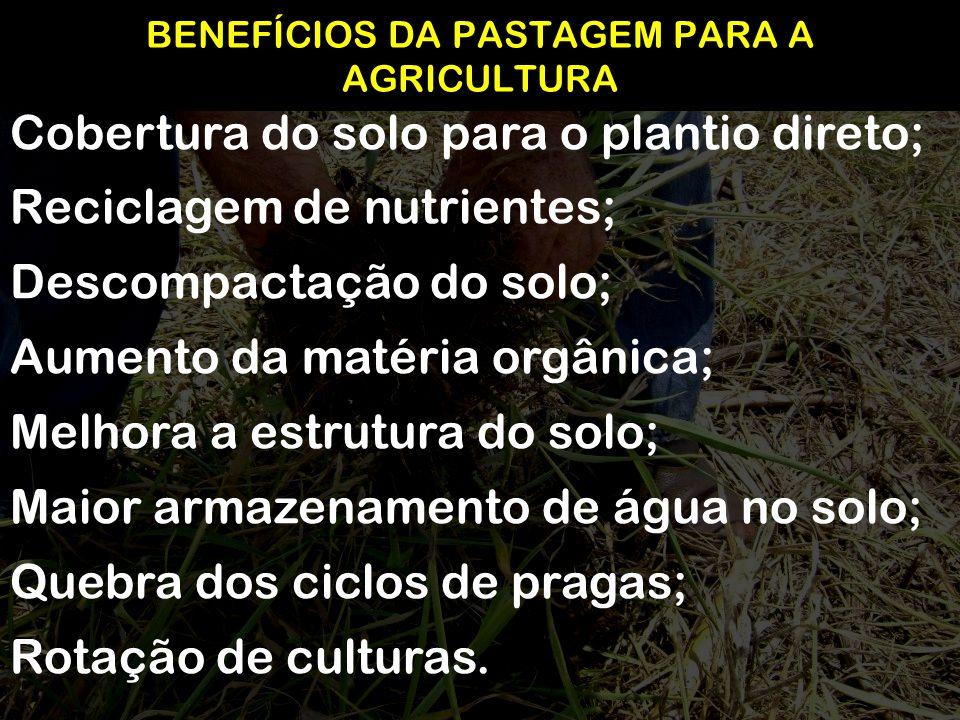 BENEFÍCIOS DA PASTAGEM PARA A AGRICULTURA