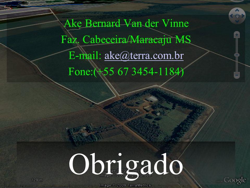 Obrigado Ake Bernard Van der Vinne Faz. Cabeceira/Maracaju MS