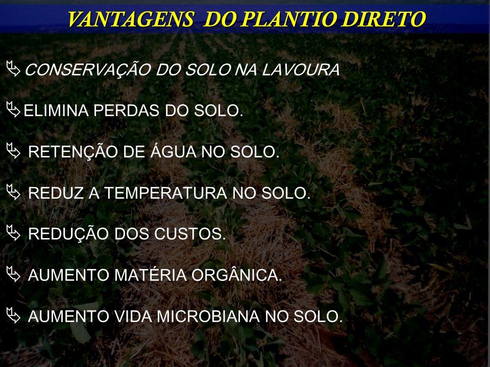VANTAGENS DO PLANTIO DIRETO