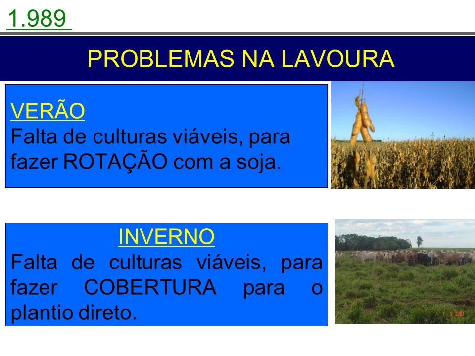 1.989 PROBLEMAS NA LAVOURA. VERÃO Falta de culturas viáveis, para fazer ROTAÇÃO com a soja.