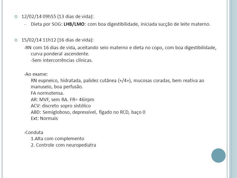 12/02/14 09h55 (13 dias de vida): Dieta por SOG: LHB/LMO: com boa digestibilidade, iniciada sucção de leite materno.