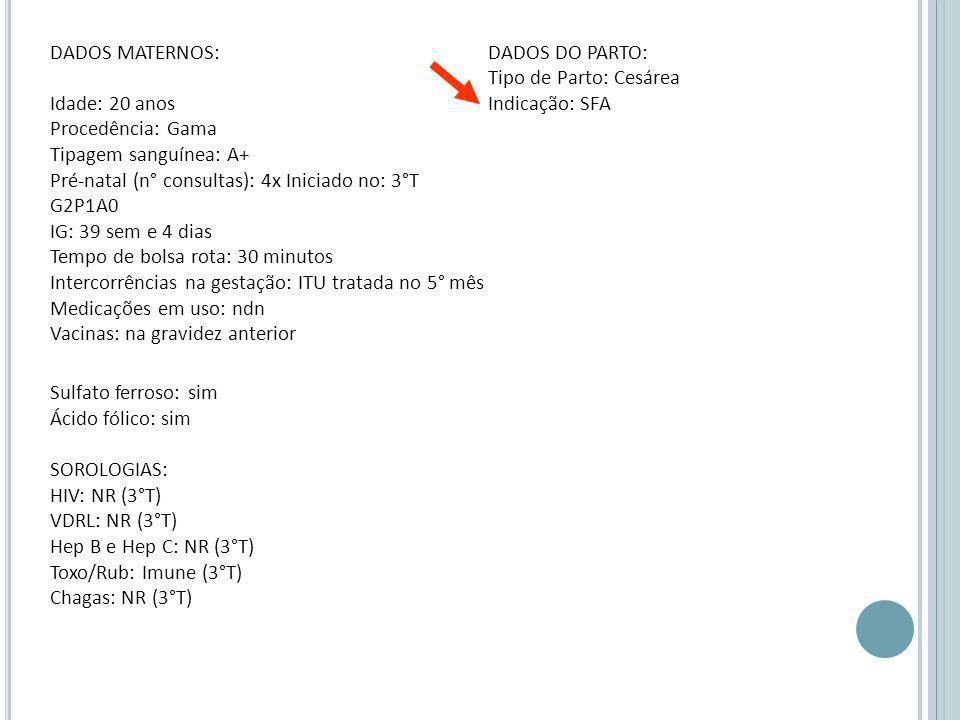 Sulfato ferroso: sim Ácido fólico: sim SOROLOGIAS: HIV: NR (3°T) VDRL: NR (3°T) Hep B e Hep C: NR (3°T) Toxo/Rub: Imune (3°T) Chagas: NR (3°T)