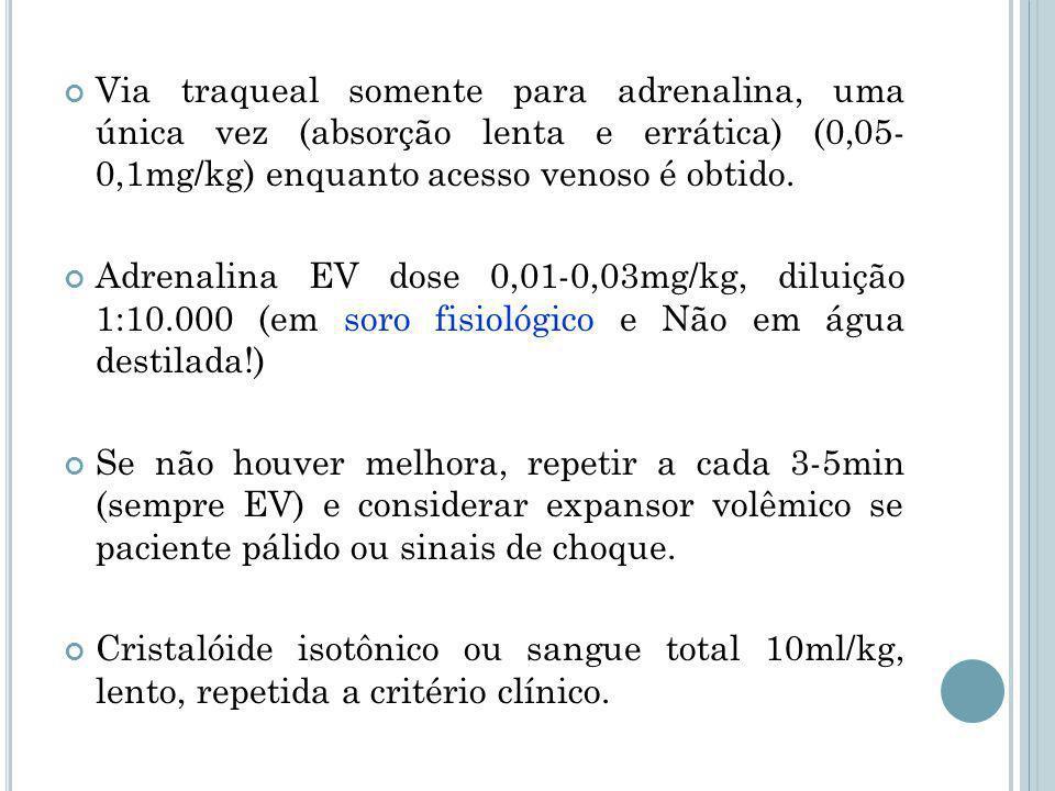 Via traqueal somente para adrenalina, uma única vez (absorção lenta e errática) (0,05- 0,1mg/kg) enquanto acesso venoso é obtido.